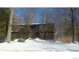 11  Jade Court  , Pomona, NY 10970 (MLS #4507401) :: Realty Teams